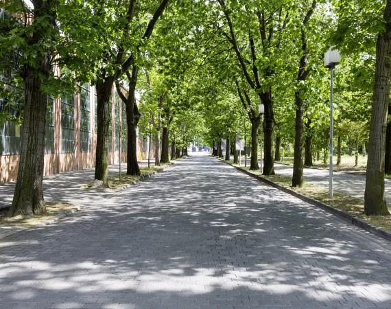 Plätze und Grünflächen
